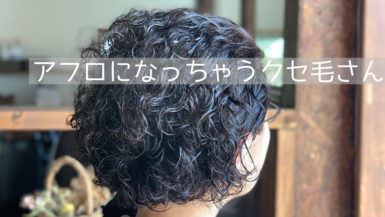 くせ毛美容師